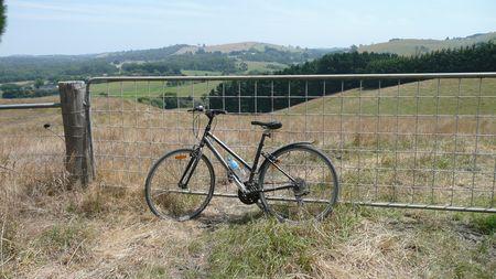 Bike ride 025