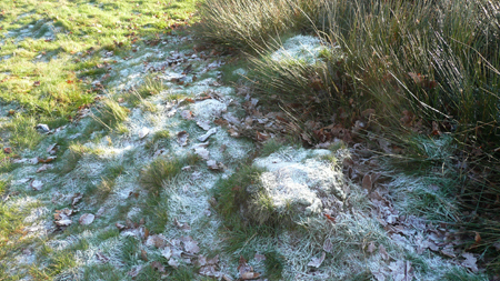 Frosty-ground