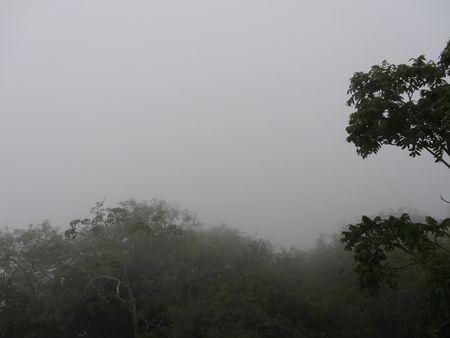 No-visibility