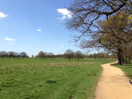 Richmond_Park